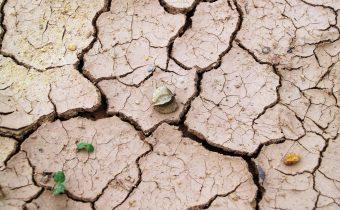 La Terra deve essere al centro di qualunque nostra pianificazione